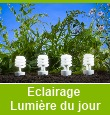 Ampoules lumi&egrave;re du jour 