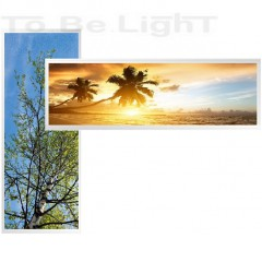 Dalle LED OASIS 30x120 Personnalisable