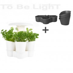 CALLA Garden LED Pack